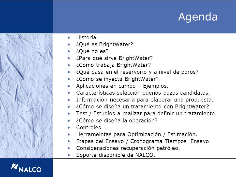 Agenda Historia. ¿Qué es BrightWater? ¿Qué no es? ¿Para qué sirve BrightWater? ¿Cómo trabaja BrightWater? ¿Qué pasa en el reservorio y a nivel de poro