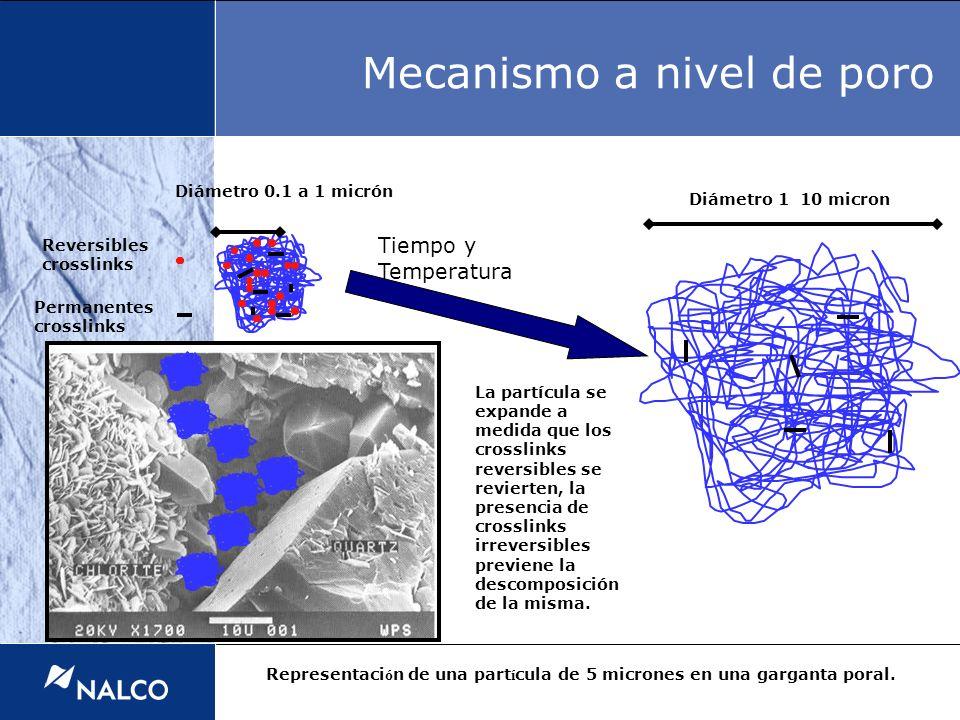 Mecanismo a nivel de poro Reversibles crosslinks La partícula se expande a medida que los crosslinks reversibles se revierten, la presencia de crossli