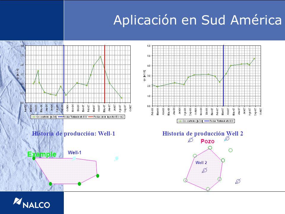 Example Well-1 Historia de producción: Well-1Historia de producción Well 2 Well 2 Pozo