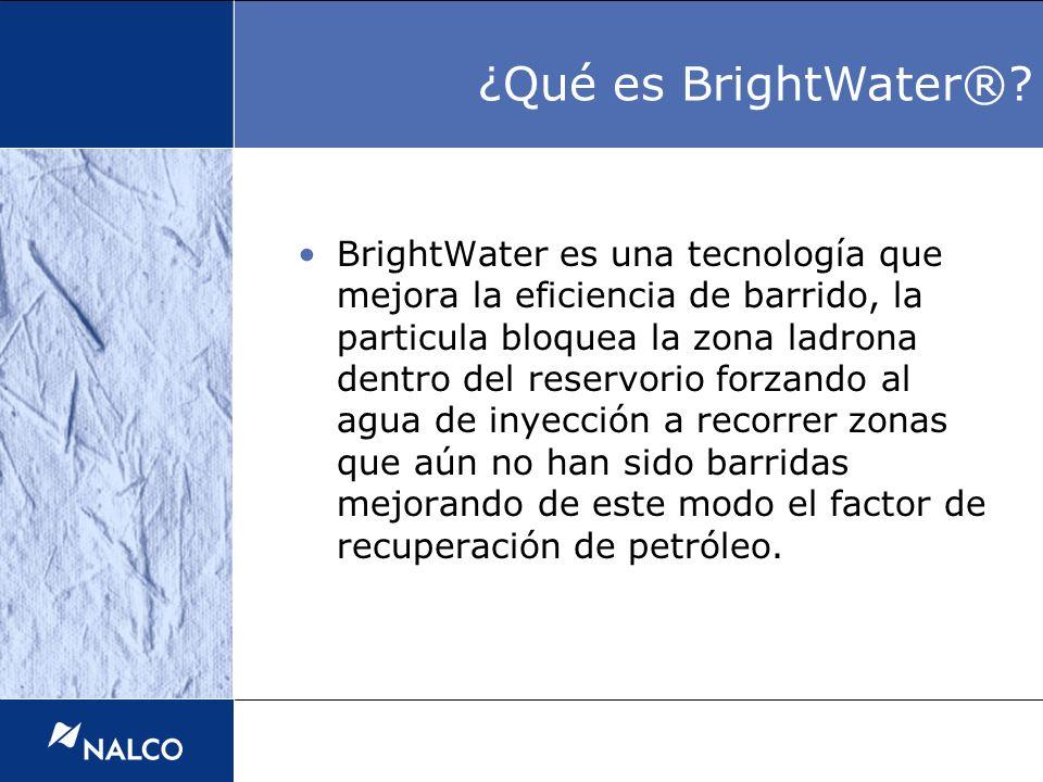 BrightWater es una tecnología que mejora la eficiencia de barrido, la particula bloquea la zona ladrona dentro del reservorio forzando al agua de inye