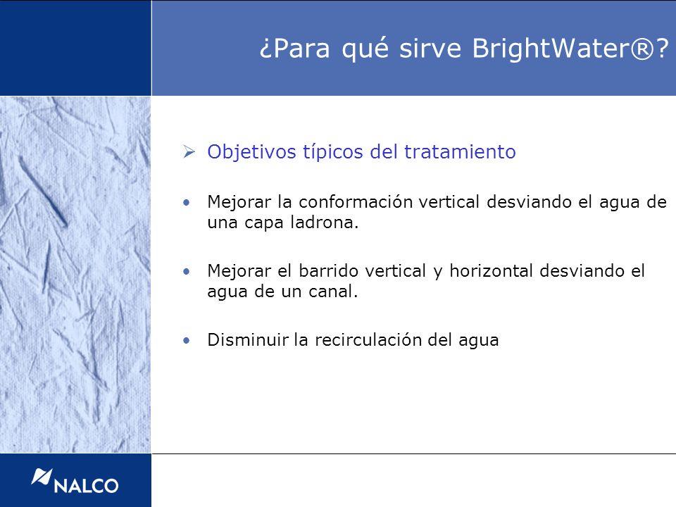 Objetivos típicos del tratamiento Mejorar la conformación vertical desviando el agua de una capa ladrona. Mejorar el barrido vertical y horizontal des