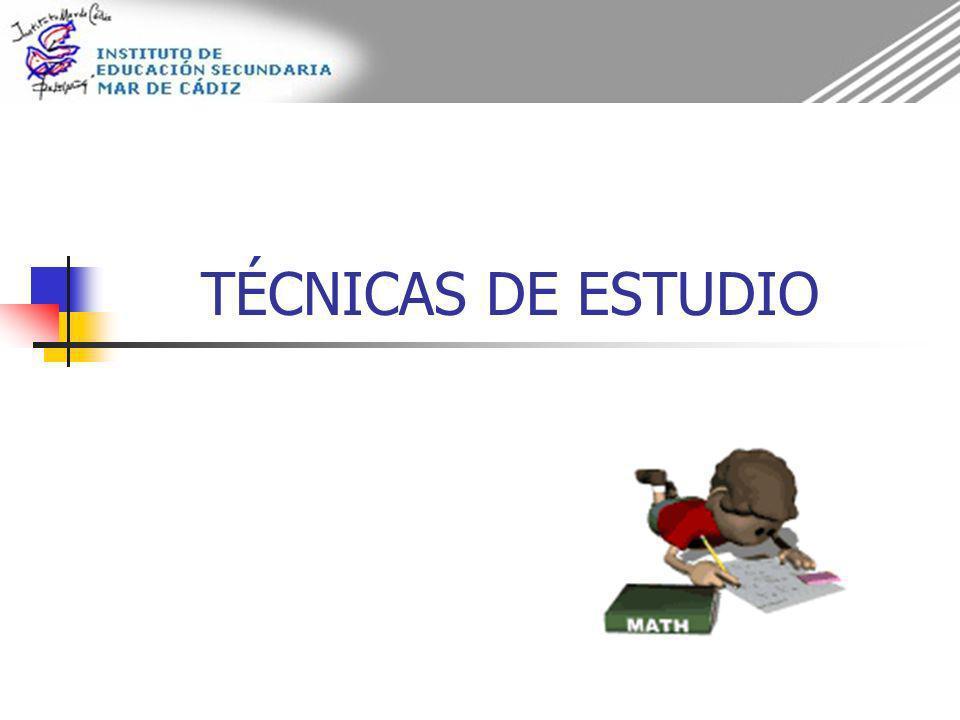 TÉCNICAS DE ESTUDIO