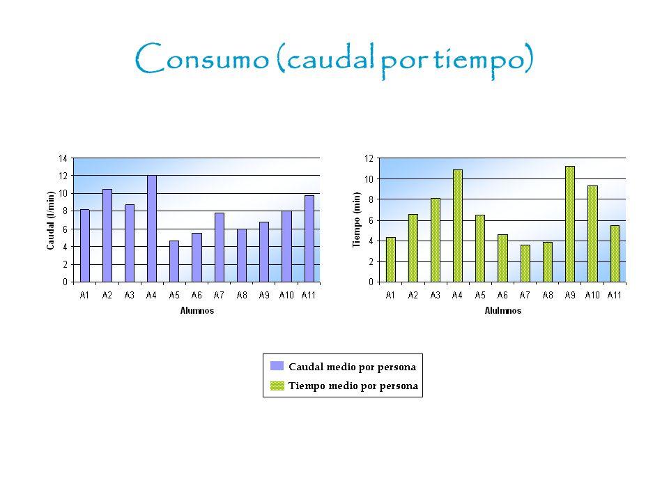Consumo (caudal por tiempo)