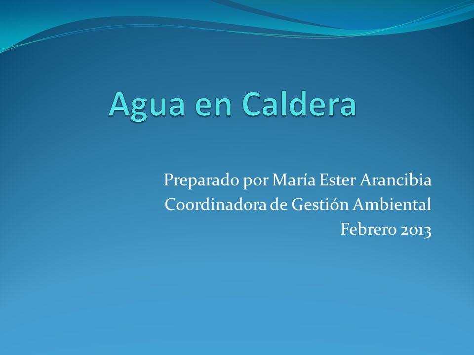 Preparado por María Ester Arancibia Coordinadora de Gestión Ambiental Febrero 2013