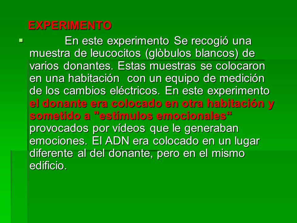 EXPERIMENTO EXPERIMENTO En este experimento Se recogió una muestra de leucocitos (glòbulos blancos) de varios donantes. Estas muestras se colocaron en