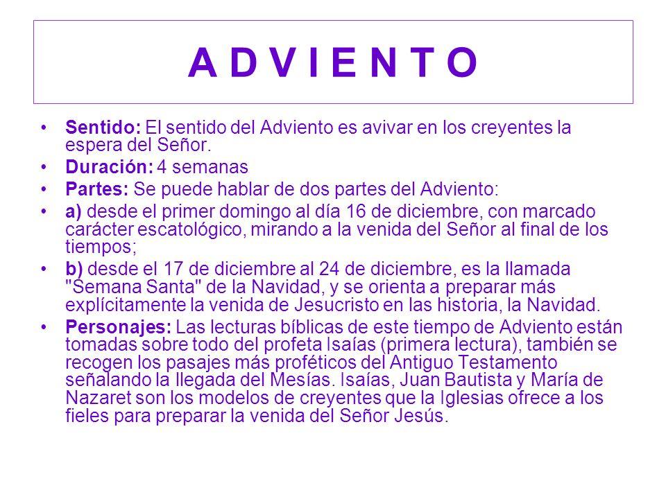 Es un tiempo para preparar la venida del Salvador: a tu corazón, a tu familia, a tu lugar de trabajo, etc.