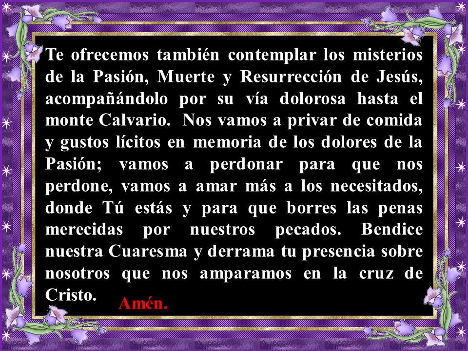 Te ofrecemos también contemplar los misterios de la Pasión, Muerte y Resurrección de Jesús, acompañándolo por su vía dolorosa hasta el monte Calvario.