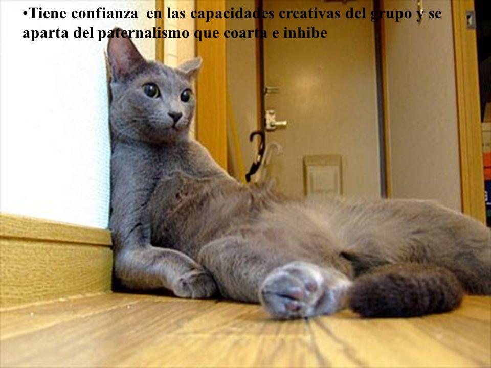 www.tonterias.com Tiene confianza en las capacidades creativas del grupo y se aparta del paternalismo que coarta e inhibe