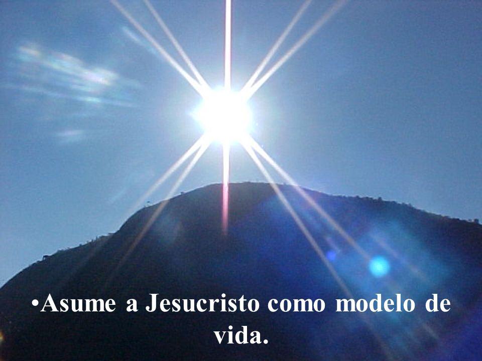 www.tonterias.com Asume a Jesucristo como modelo de vida.