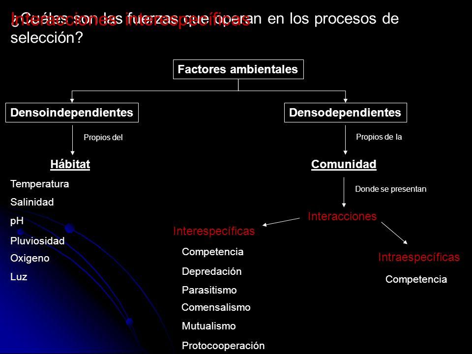 ¿Cuáles son las fuerzas que operan en los procesos de selección? Intraespecíficas Interespecíficas Competencia Depredación Parasitismo Comensalismo Mu