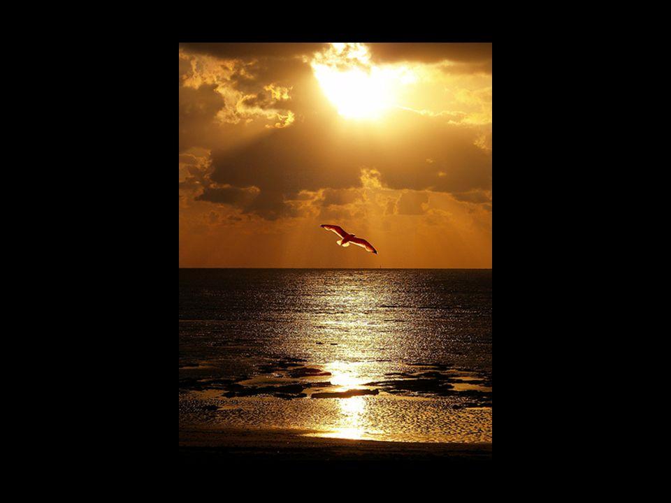 EL TIEMPO es el regalo más preciado que tenemos porque es LIMITADO.