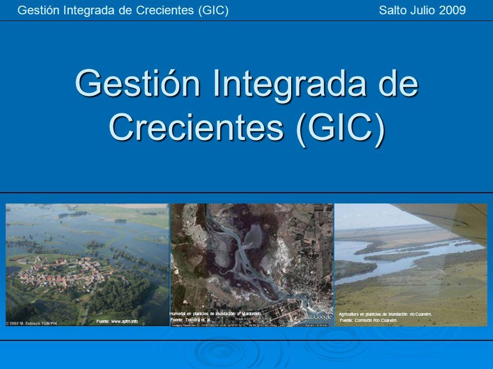 Gestión Integrada de Crecientes (GIC) Gestión Integrada de Crecientes (GIC) Salto Julio 2009 Agricultura en planicies de inundación río Cuareim. Fuent