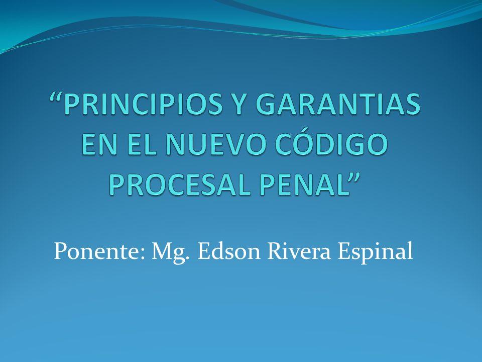 Los Principios parten del marco Constitucional.