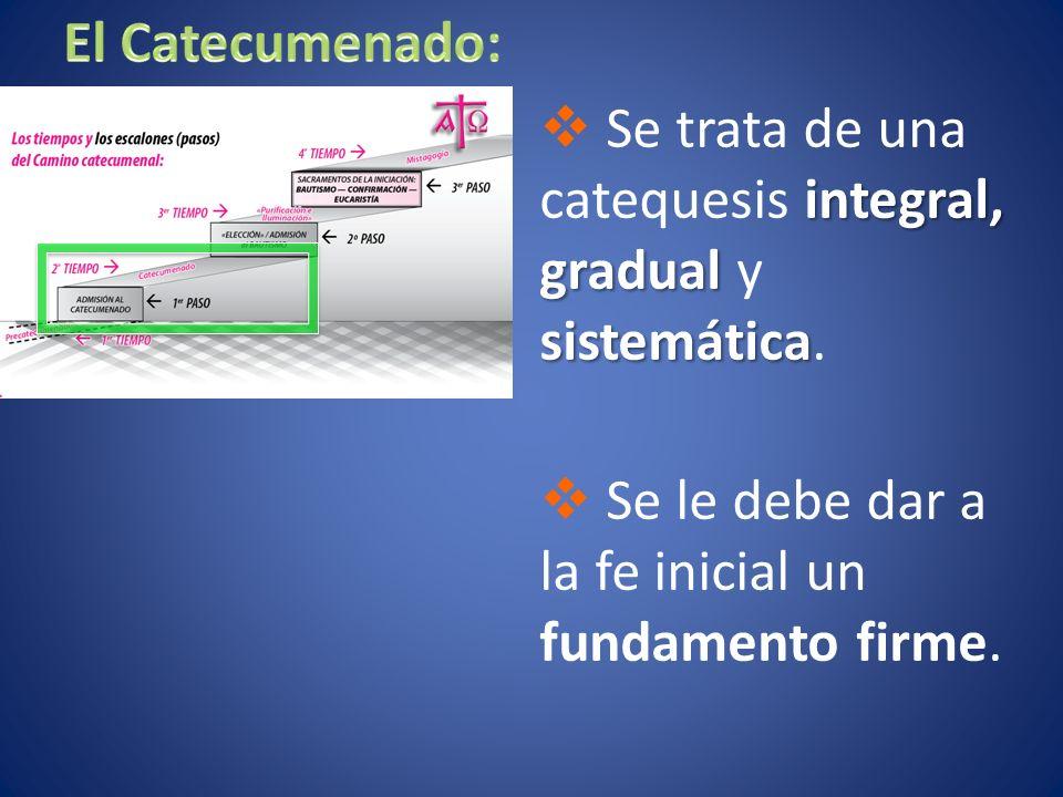 integral, gradual sistemática Se trata de una catequesis integral, gradual y sistemática.