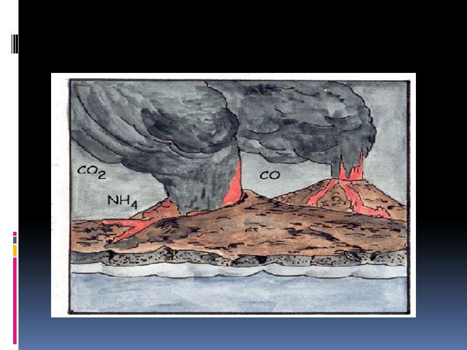 La capacidad de estos últimos de emitir oxígeno provocó grandes cambios en la atmósfera. Cuando la cantidad de oxígeno fue abundante se formó el ozono