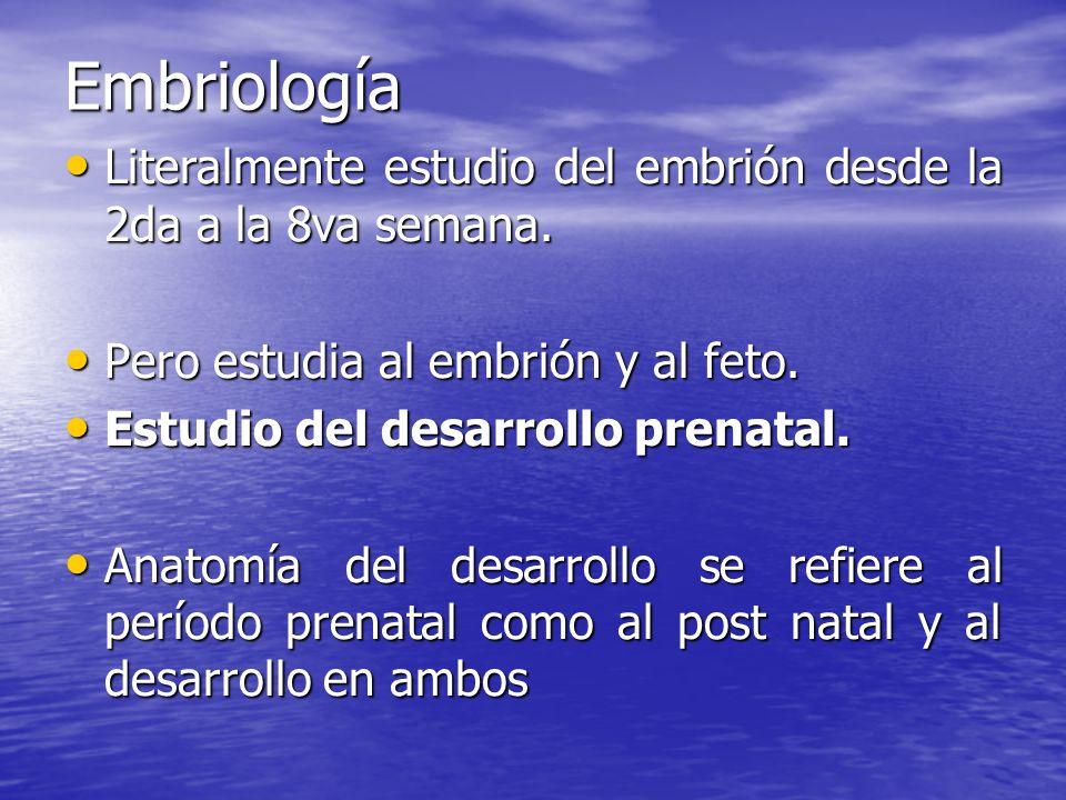 Embriología Literalmente estudio del embrión desde la 2da a la 8va semana. Literalmente estudio del embrión desde la 2da a la 8va semana. Pero estudia