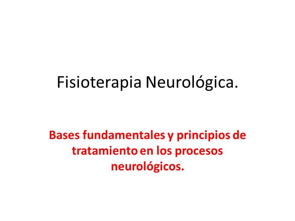 Fisioterapia Neurológica. Bases fundamentales y principios de tratamiento en los procesos neurológicos.