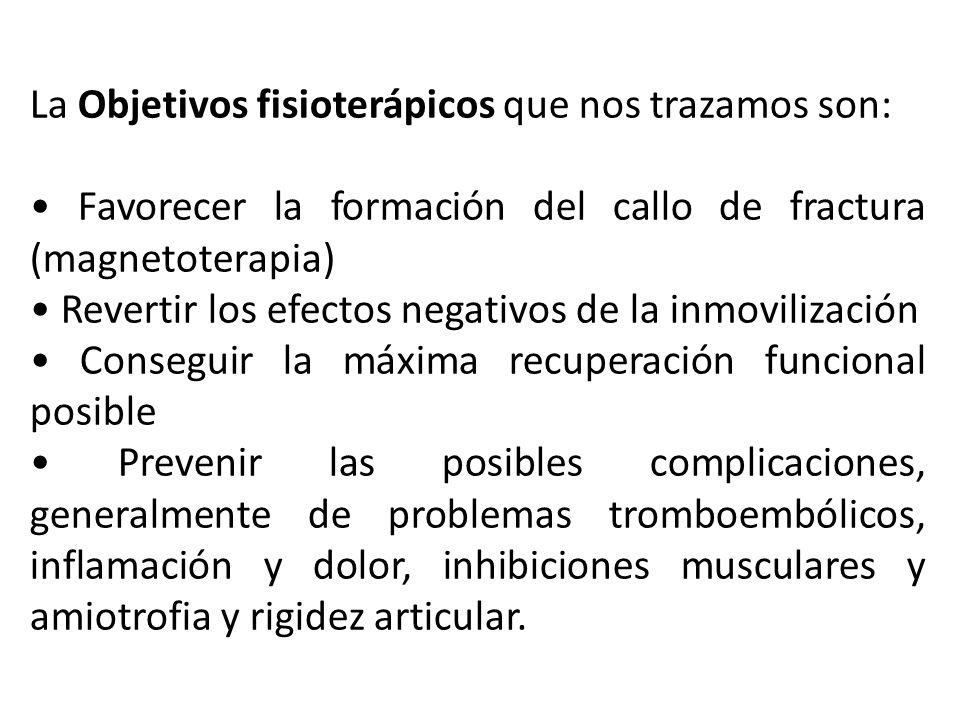 La Objetivos fisioterápicos que nos trazamos son: Favorecer la formación del callo de fractura (magnetoterapia) Revertir los efectos negativos de la i