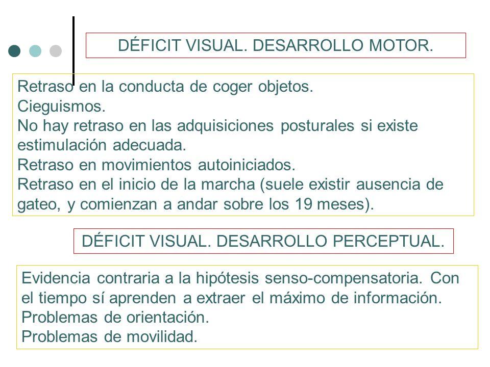 DÉFICIT VISUAL.DESARROLLO COGNITIVO.