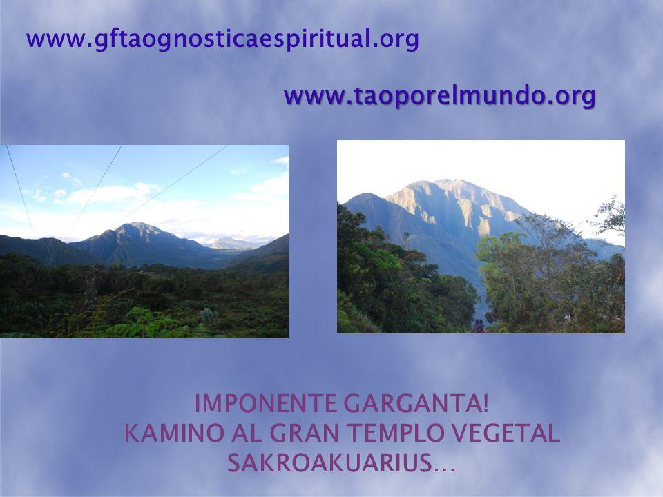 HOY GRAN TEMPLO VEGETAL SAKROAKUARIUS… HERMOSO OLIMPO! www.gftaognosticaespiritual.orgwww.taoporelmundo.org