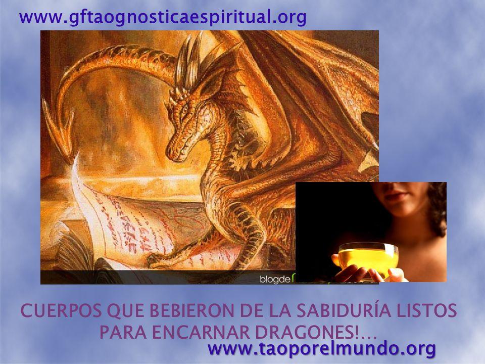 www.taoporelmundo.org