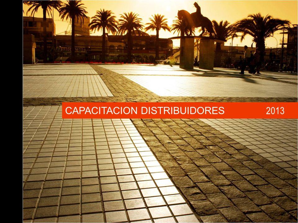 CAPACITACION DISTRIBUIDORES 2013