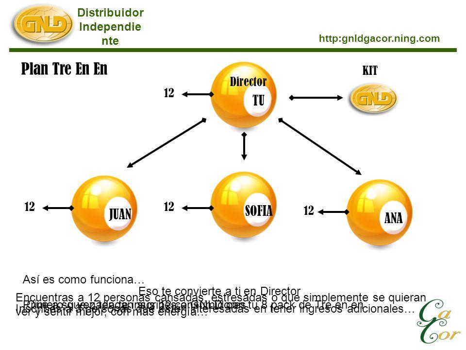 Distribuidor Independie nte http:gnldgacor.ning.com Plan Tre En En TUJUANSOFIAANA KIT 12 Director Así es como funciona… Primero que nada te inscribes