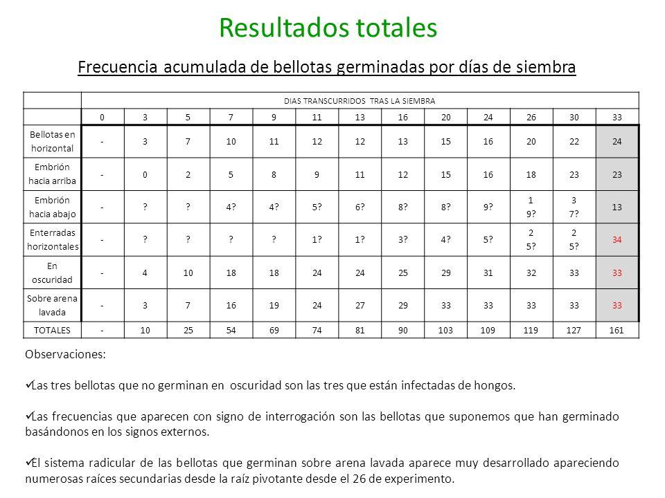 Resultados totales Frecuencia acumulada de bellotas germinadas por días de siembra DIAS TRANSCURRIDOS TRAS LA SIEMBRA 035791113162024263033 Bellotas e