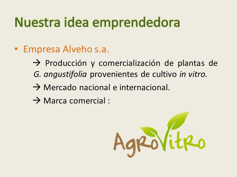 Empresa Alveho s.a.Producción y comercialización de plantas de G.