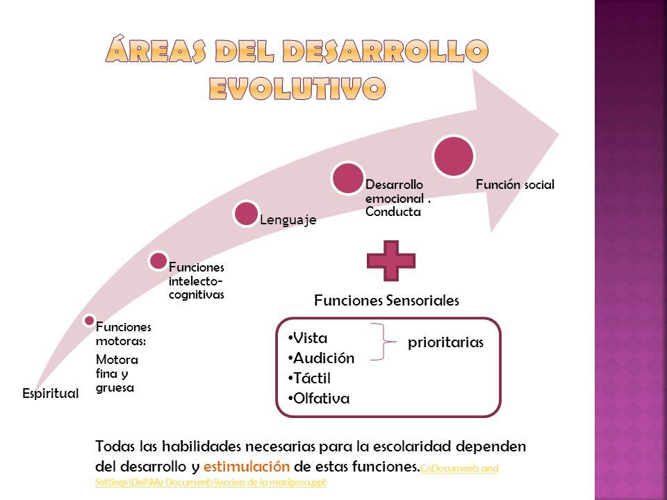 Funciones motoras: Motora fina y gruesa Funciones intelecto- cognitivas Lenguaje Desarrollo emocional. Conducta Función social Funciones Sensoriales V