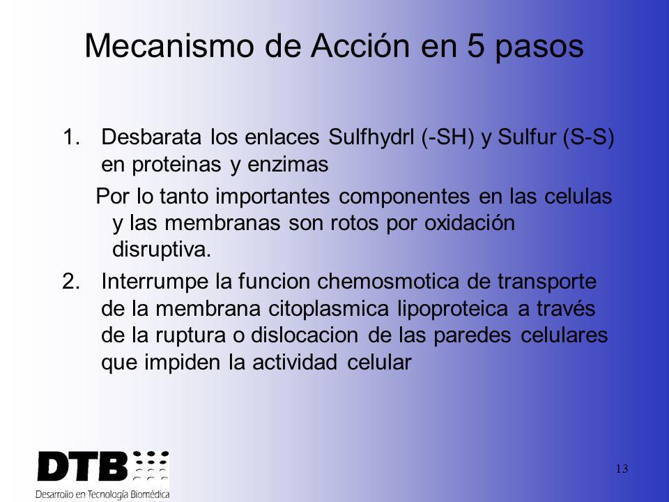 12 Actividad Biocida Minncare ® Es un agente antimicrobial muy potente y efectivo contra un amplio espectro de microoganismos, incluyendo bacterias, e