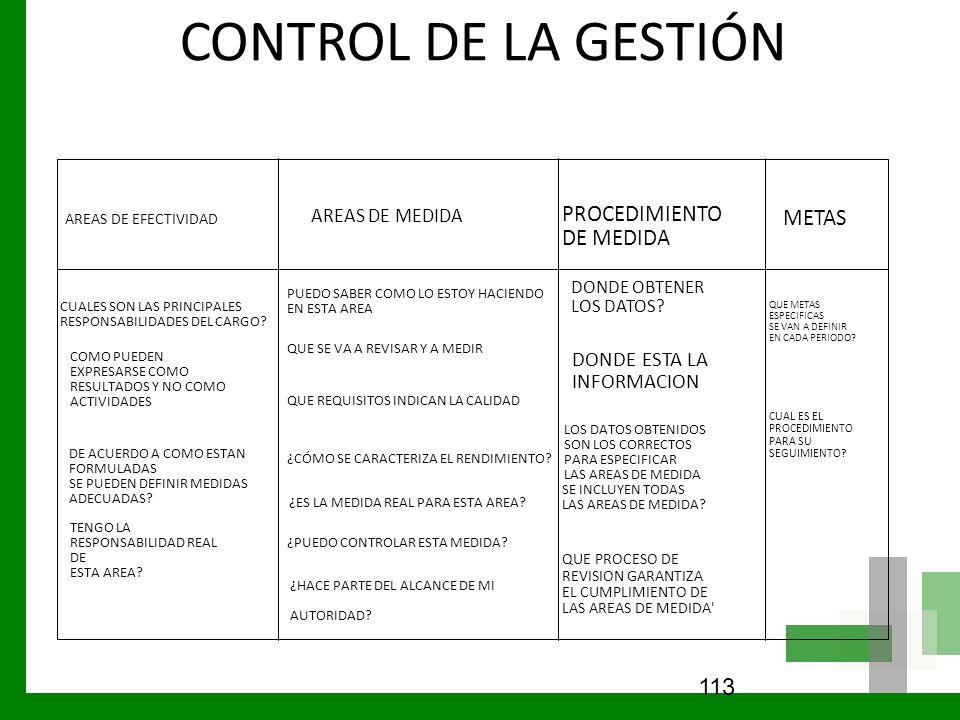CONTROL DE LA GESTIÓN 113 AREAS DE EFECTIVIDAD AREAS DE MEDIDA CUALES SON LAS PRINCIPALES RESPONSABILIDADES DEL CARGO? COMO PUEDEN EXPRESARSE COMO RES