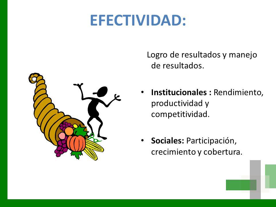 EFECTIVIDAD: Logro de resultados y manejo de resultados. Institucionales : Rendimiento, productividad y competitividad. Sociales: Participación, creci