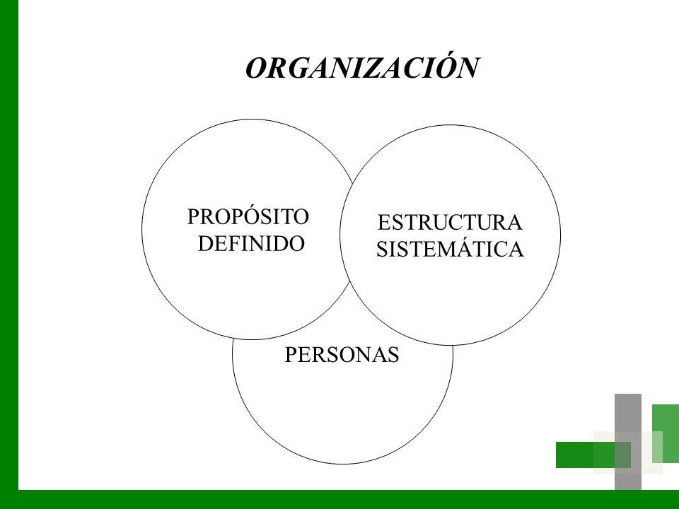 PERSONAS PROPÓSITO DEFINIDO ESTRUCTURA SISTEMÁTICA ORGANIZACIÓN