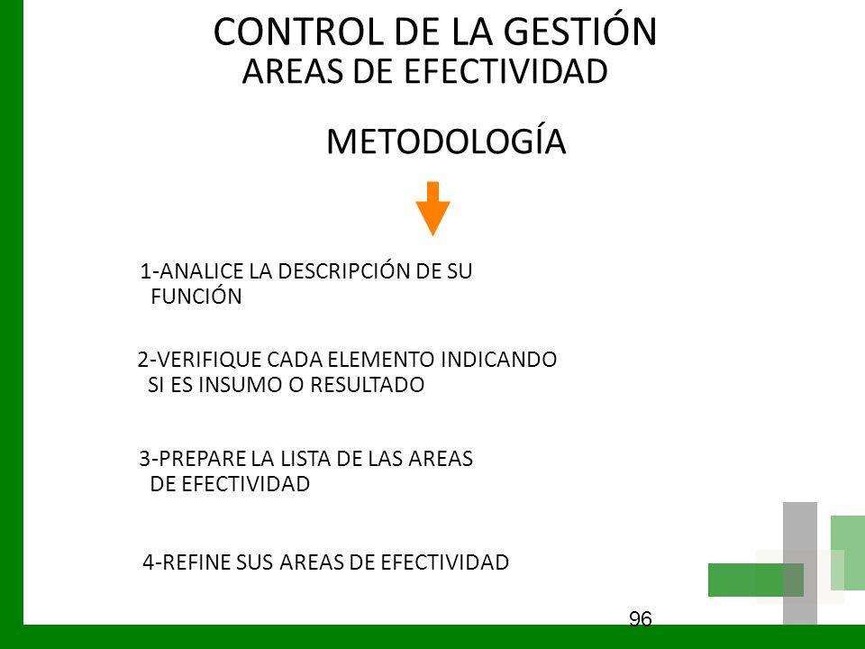 CONTROL DE LA GESTIÓN AREAS DE EFECTIVIDAD METODOLOGÍA 96 1-ANALICE LA DESCRIPCIÓN DE SU FUNCIÓN 2-VERIFIQUE CADA ELEMENTO INDICANDO SI ES INSUMO O RE