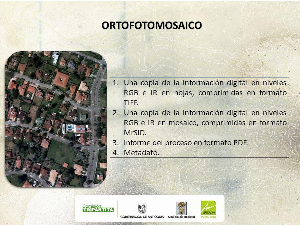 1.Una copia de la información digital en niveles RGB e IR en hojas, comprimidas en formato TIFF. 2.Una copia de la información digital en niveles RGB