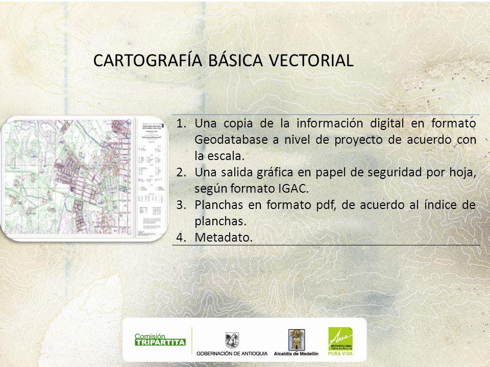 1.Una copia de la información digital en formato Geodatabase a nivel de proyecto de acuerdo con la escala. 2.Una salida gráfica en papel de seguridad