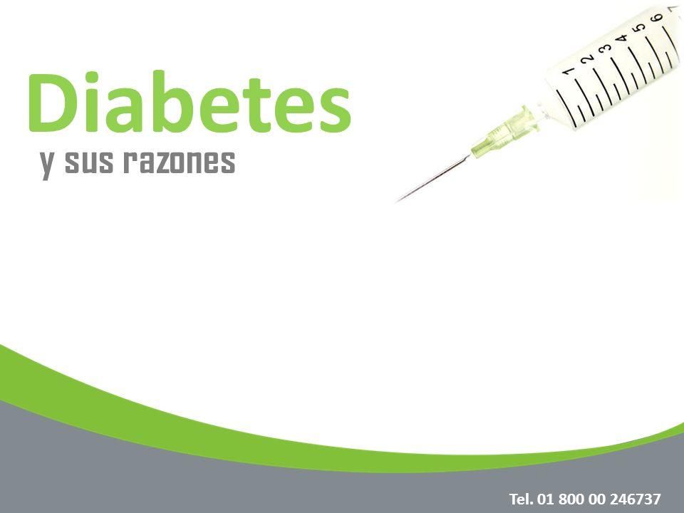 Principales sustancias que alimentan el cuerpo Azúcar: Sustancia que se obtiene de los alimentos y que se le da el nombre de glucosa una vez que esta dentro del cuerpo.