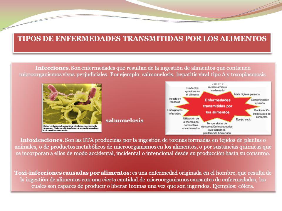 Parasitarias: producidas por parásitos como la triquinelosis, toxoplasmosis, hidatidosis. Ciclo toxoplasmosis Intoxicaciones por metales pesados como