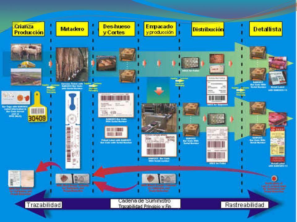 Procedimientos etiquetado por sección Procedimiento de trazabilidad 8- Identificación, Etiquetado y Trazabilidad