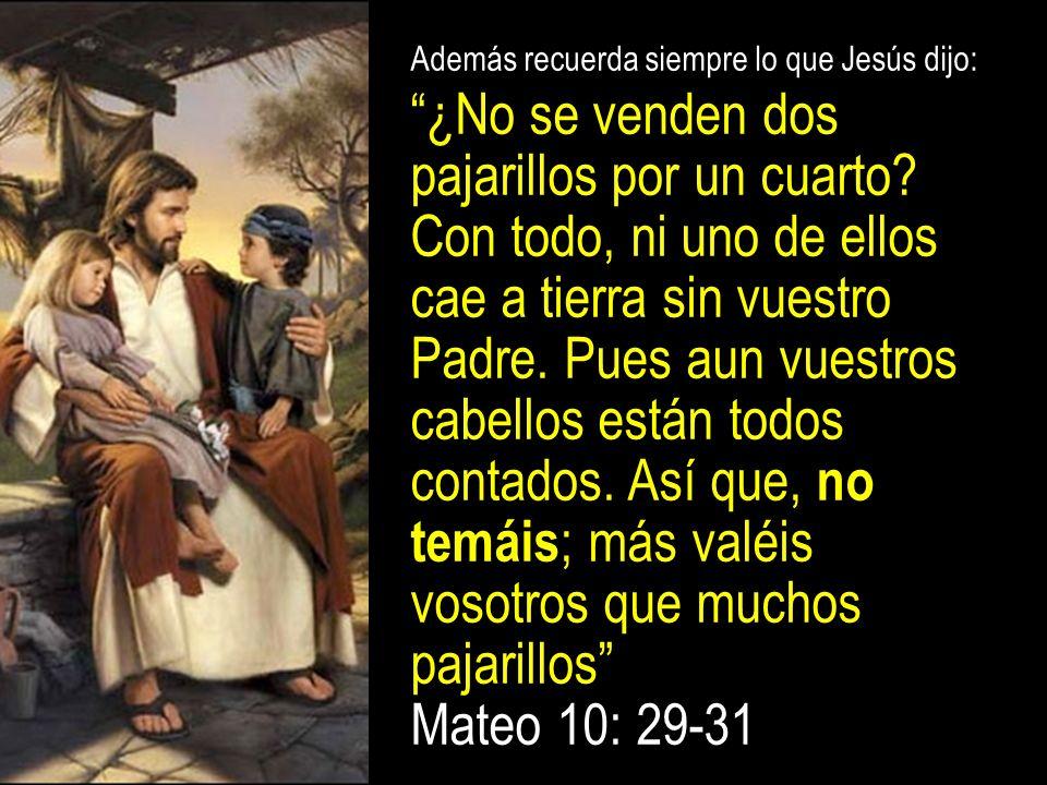 Además recuerda siempre lo que Jesús dijo: ¿No se venden dos pajarillos por un cuarto? Con todo, ni uno de ellos cae a tierra sin vuestro Padre. Pues