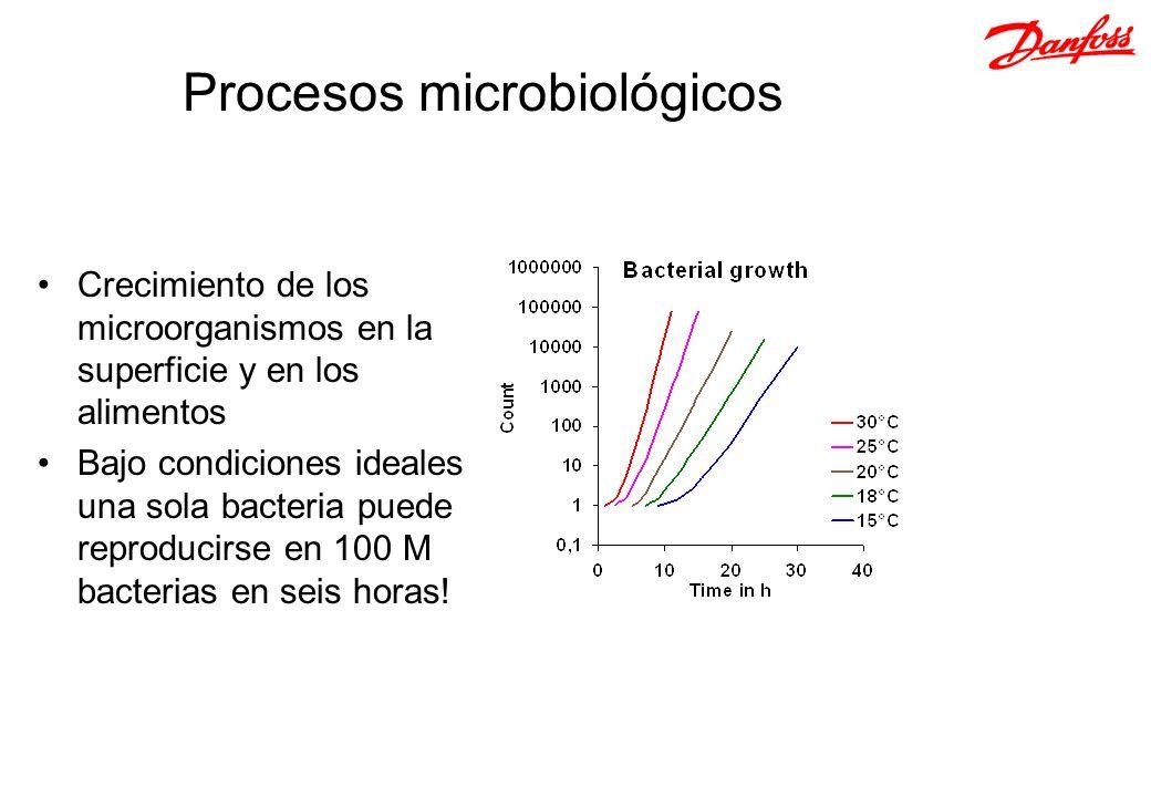 Crecimiento de los microorganismos en la superficie y en los alimentos Bajo condiciones ideales una sola bacteria puede reproducirse en 100 M bacteria