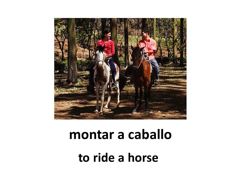 montar a caballo to ride a horse
