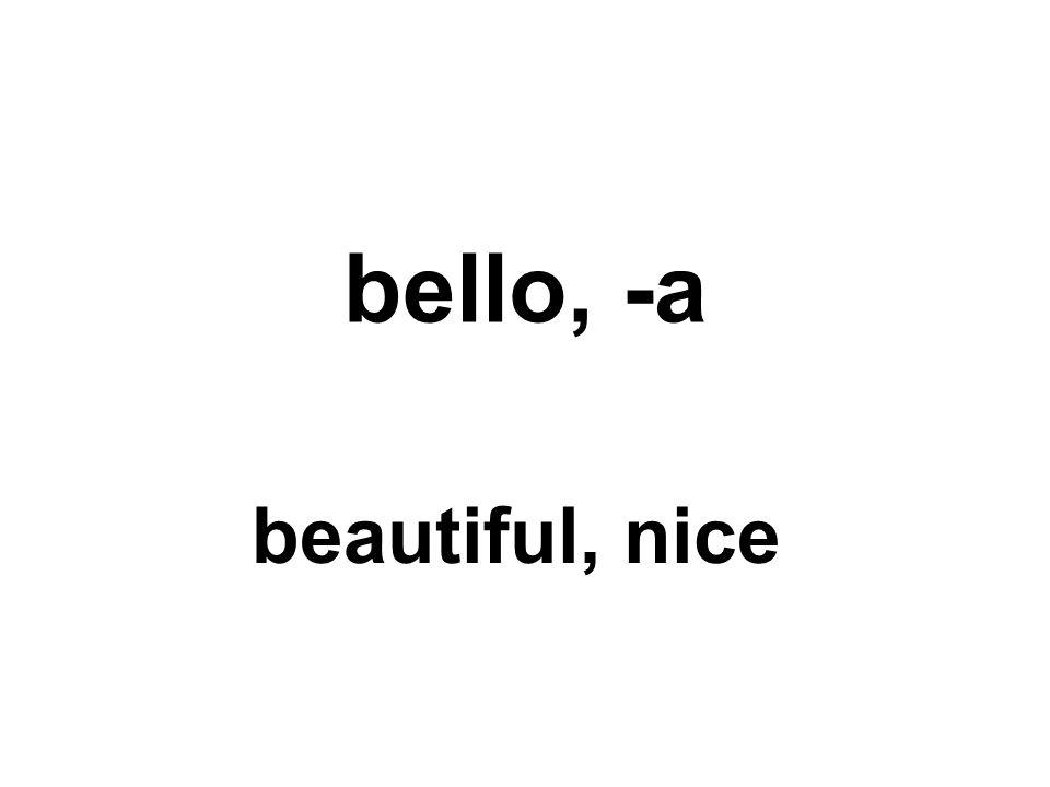 bello, -a beautiful, nice
