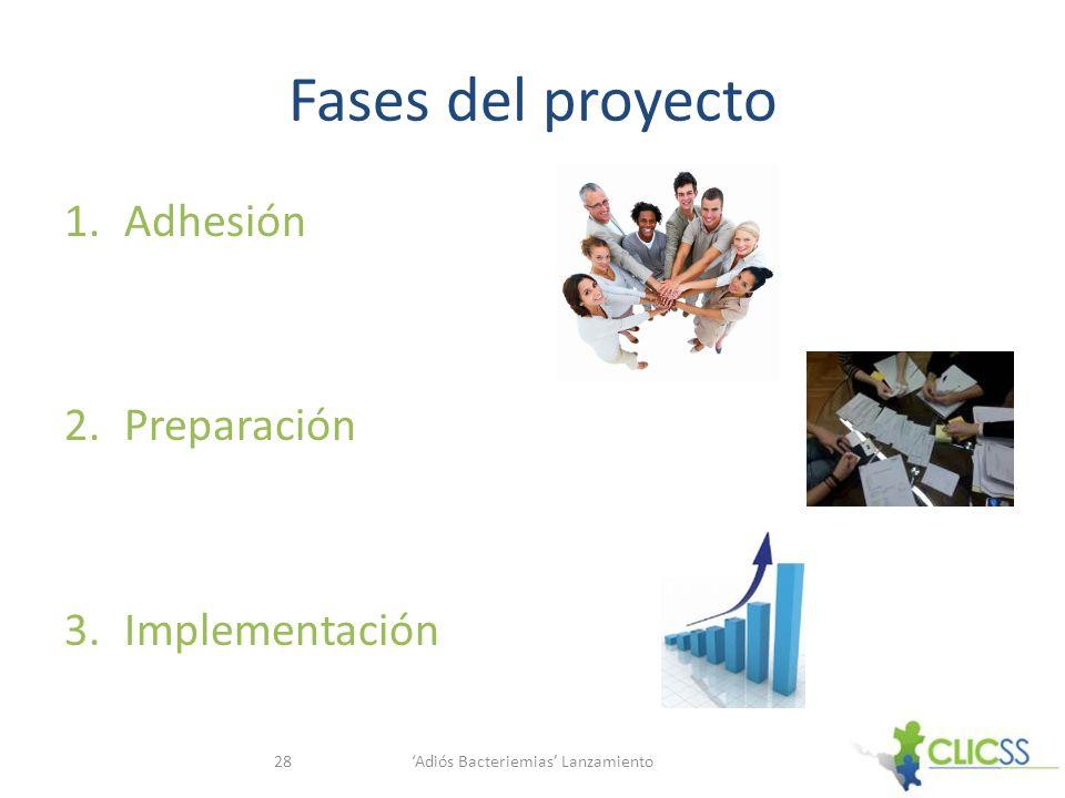 Fases del proyecto 1.Adhesión 2.Preparación 3.Implementación Adiós Bacteriemias Lanzamiento28