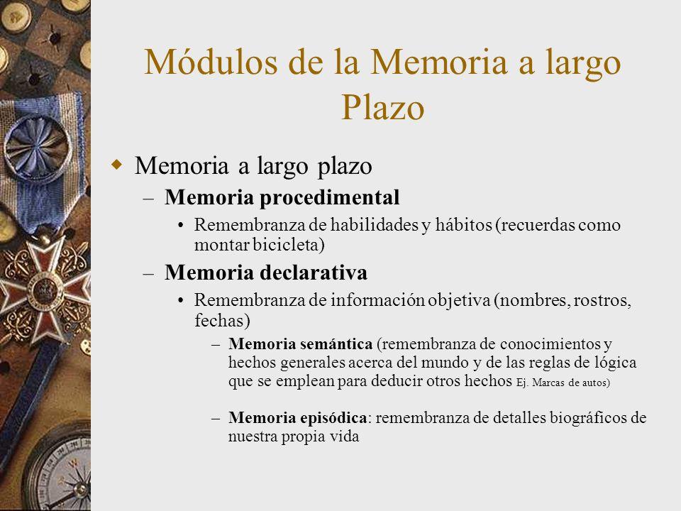 Módulos de la Memoria a largo Plazo Memoria a largo plazo – Memoria procedimental Remembranza de habilidades y hábitos (recuerdas como montar biciclet