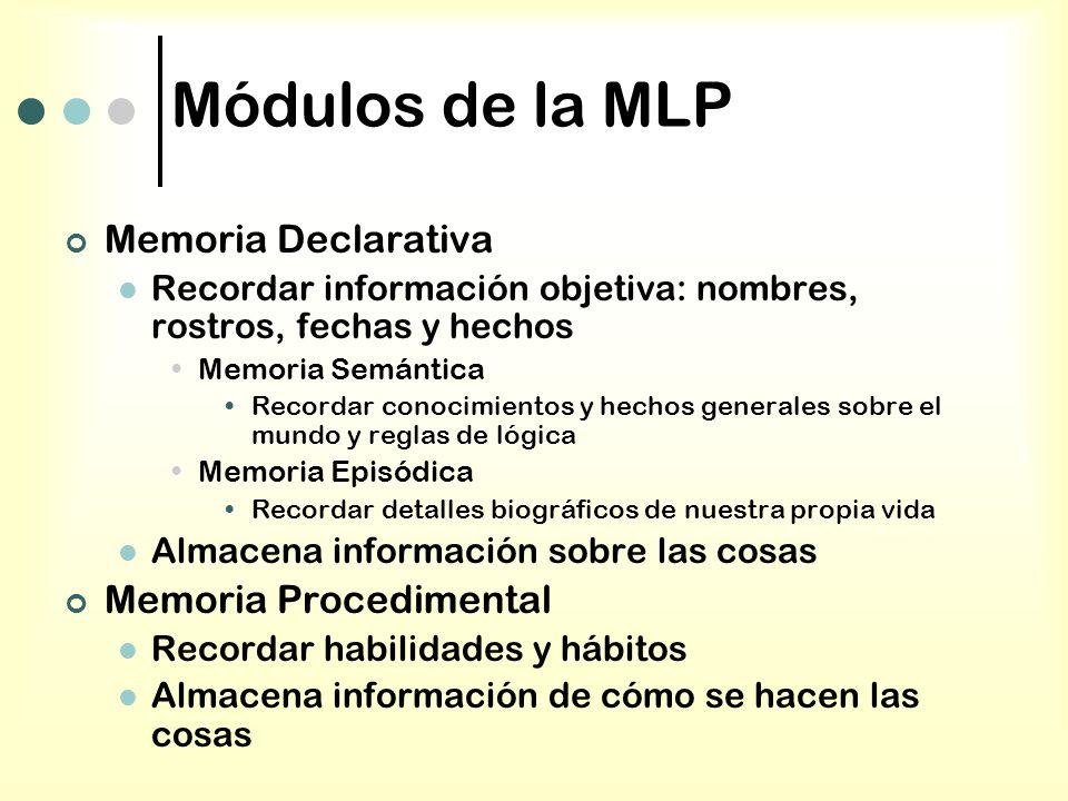 Módulos de la MLP Memoria Declarativa Recordar información objetiva: nombres, rostros, fechas y hechos Memoria Semántica Recordar conocimientos y hech
