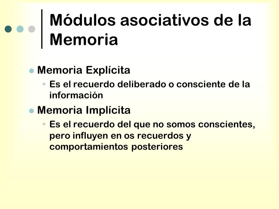 Módulos asociativos de la Memoria Memoria Explícita Es el recuerdo deliberado o consciente de la información Memoria Implícita Es el recuerdo del que