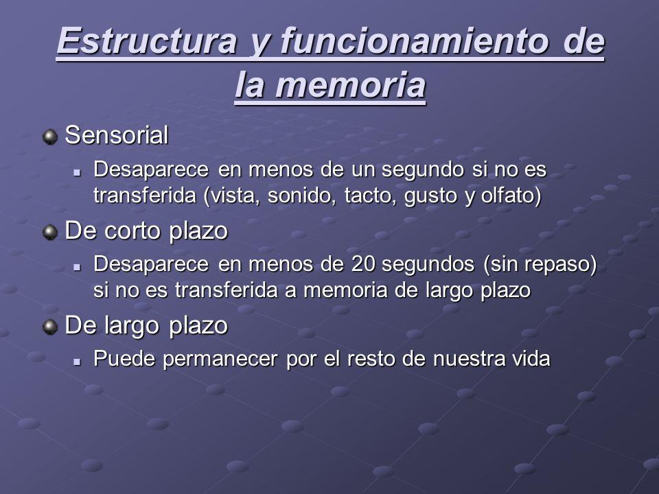 Estructura y funcionamiento de la memoria Sensorial Desaparece en menos de un segundo si no es transferida (vista, sonido, tacto, gusto y olfato) Desa