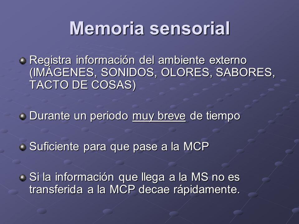 Memoria sensorial Registra información del ambiente externo (IMÁGENES, SONIDOS, OLORES, SABORES, TACTO DE COSAS) Durante un periodo muy breve de tiemp